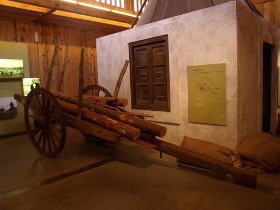 Casa del parque Laguna Negra - Museo del bosque