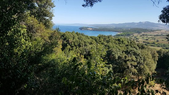 Baratti and Populonia Archeological Park