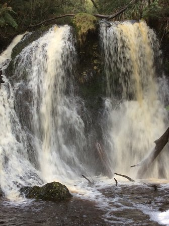 Strahan, Australia: Hogarth Falls in winter.