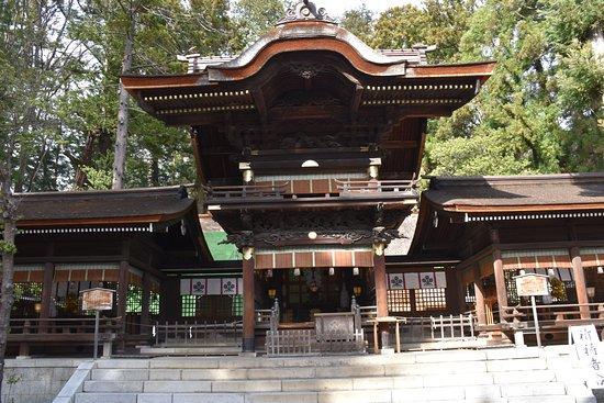 Suwa Shrine: こちらが秋宮本殿