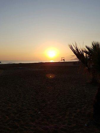 Hotel Delfina Beach: 20160811_065903_large.jpg