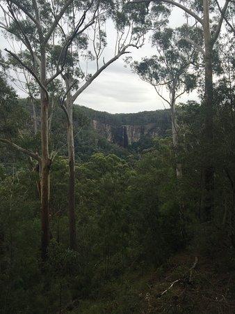 Bangalow, Australia: Minyon Falls