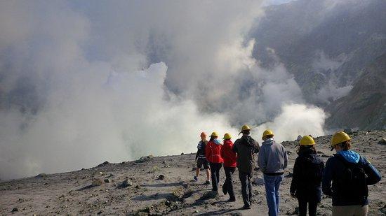 Whakatane, Selandia Baru: Walk zum Kraterrand