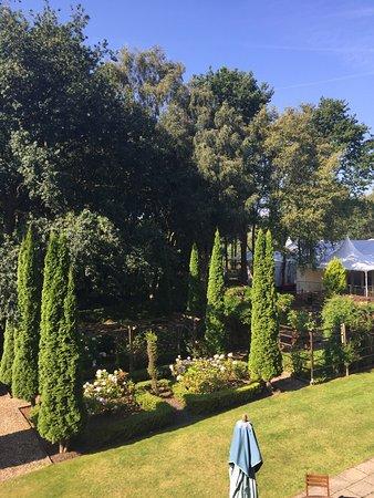 Oakmere, UK: photo2.jpg