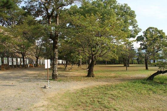 Kochi Park
