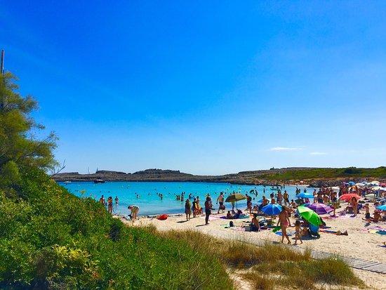 Binibeca Beach: photo6.jpg