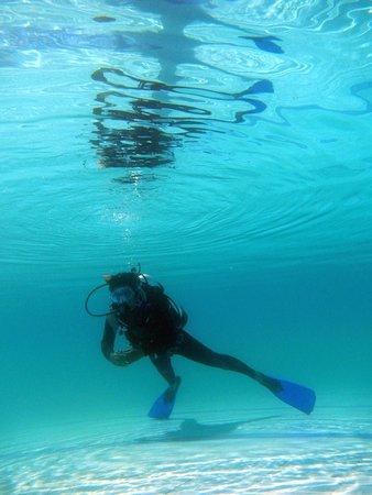 Padi Open water certification courses in pune, Fin Pivot, Scuba pro ...