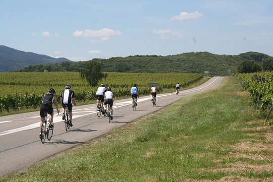 Gaillard, Francia: Riding into the distance in Alsace