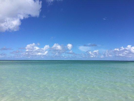 Bilde fra Parrot Cay
