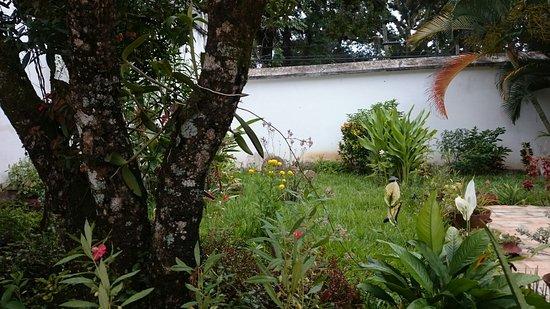 Gracias, Honduras: DSC_0455_large.jpg