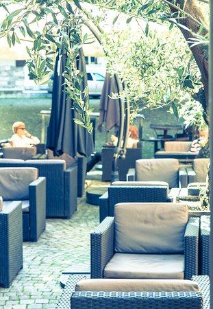 Tribeca: La terrasse et ses oliviers