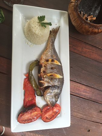 Madre Tierra Organic Restaurant Benicassim: photo1.jpg