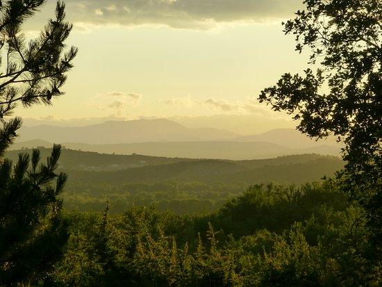 Vèzenobres, France : Uitzicht vanop het terras
