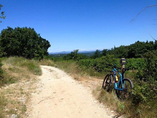 Vèzenobres, France : Fietsparadijs, zowel voor MTB als roadies