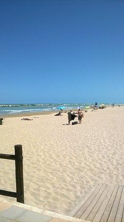 la spiaggia libera di fianco ai bagni - Picture of Bikini Beach ...
