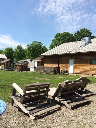 Sunfrost Farm: Sunny spot