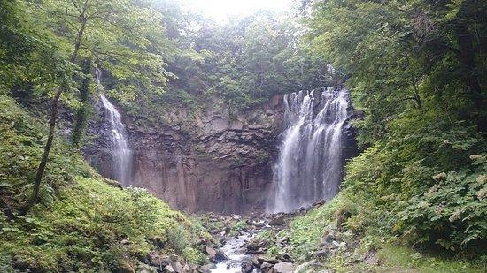 Takino Suzuran Hillside National Park: DSC_3686_large.jpg