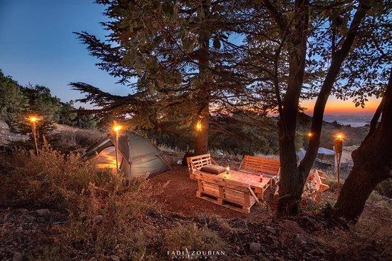 Cedars Ground Campsite