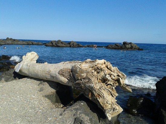 Dal Pirata Beach: FB_IMG_1471273674667_large.jpg