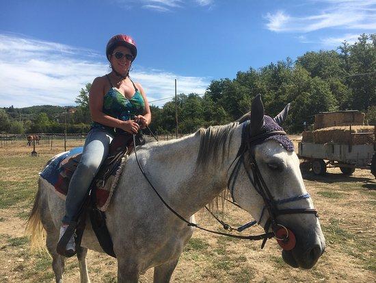 Horses and Vineyards : photo0.jpg