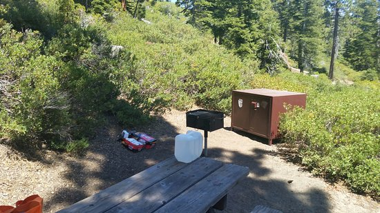 Emerald Bay Campground: Campsite 6 Grill and Bear Box