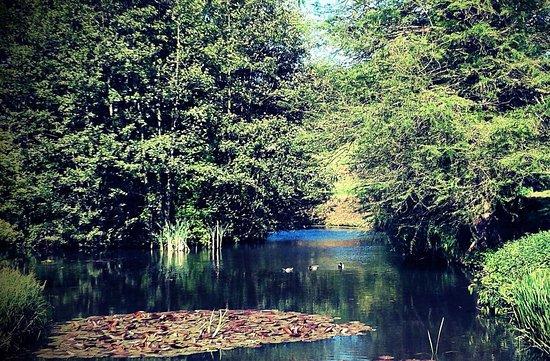 Jardin botanique du montet villers les nancy frankrijk for Jardin botanique nancy