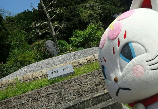 Miyawaka, Japonia: IMG_20160816_235918_large.jpg