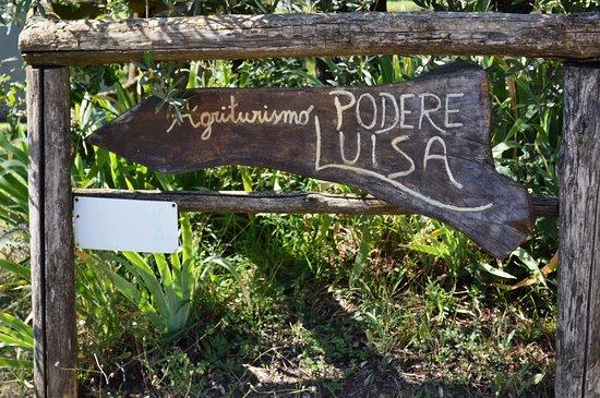 Montevarchi, İtalya: Podere Luisa