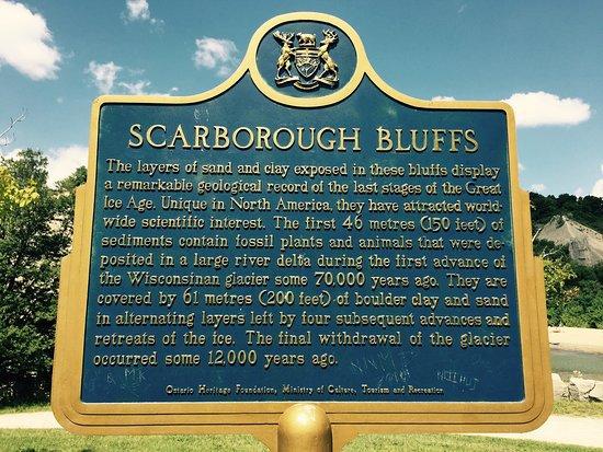 Scarborough Bluffs: photo5.jpg