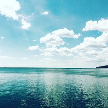 Scarborough Bluffs: photo6.jpg