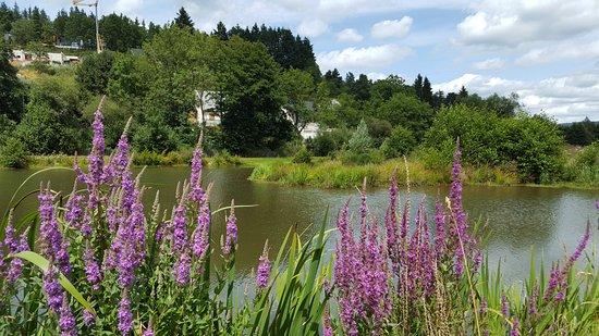 Aydat, Francia: Premier bassin de décantation des eaux