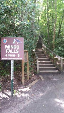 Mingo Falls: 20160815_112141_large.jpg