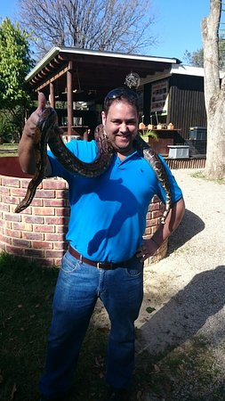 Lawnwood Snake Sanctuary: DSC_0039_large.jpg