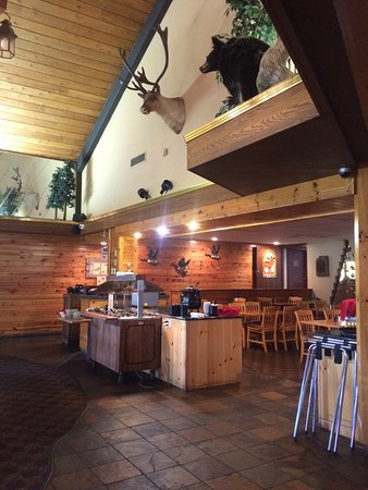 Orange Moose Bar and Grill: photo1.jpg
