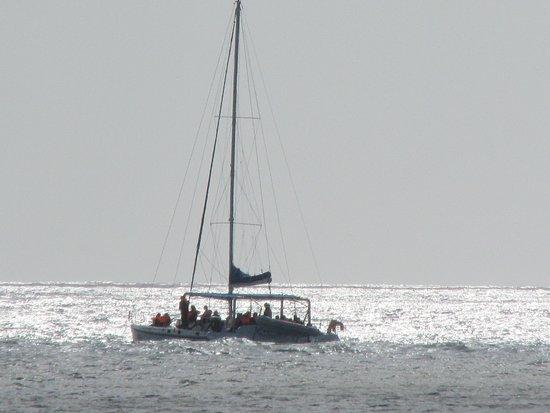 Bilde fra Pereybere Beach