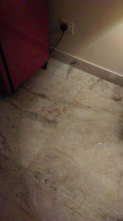 Hotel Mass: Leaking water from fridge