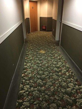 Comfort Inn and Suites: Couloir 3ème étage