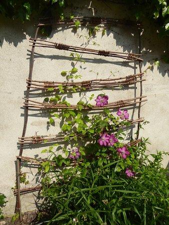 Chedigny, France : vue rosier et support