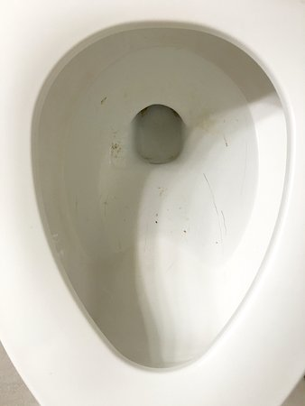 Quality Inn: dirty toilet