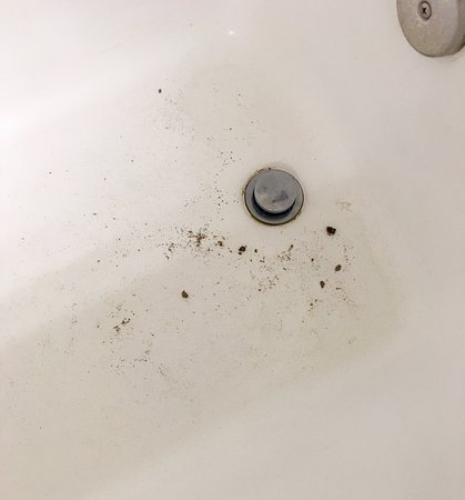 Quality Inn: clumps of dirt from around the drain after turning on the water