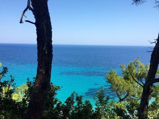 Photo1Jpg - Picture Of Tsamadu Beach, Samos - Tripadvisor-1058