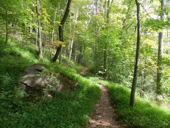 Pipestem, WV: The hike at the bottom of the tram