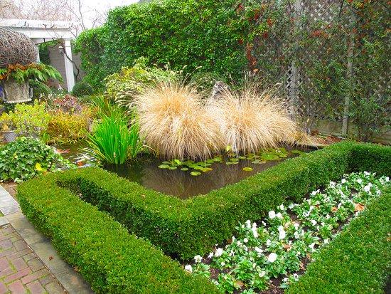 Washington, VA: Courtyard Stream & Pond