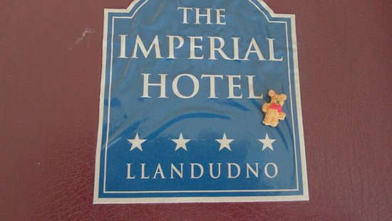 Imperial Hotel: Teddy on the go