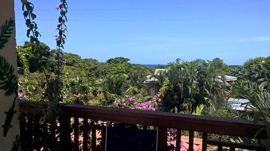 Roatan Backpackers' Hostel: Ocean view from rooftop pergola. My favorite place to read.