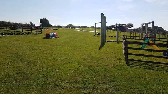 Funny Farm Adventures: Another family fun day here.