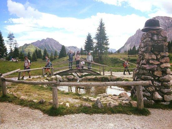 Province of Belluno, Italie : Sorgenti del Piave