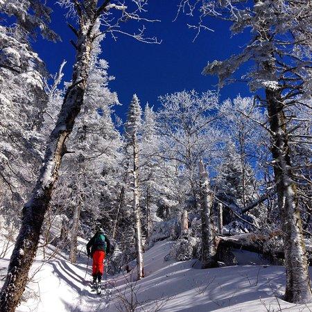 Sutton, Canadá: Rando-Ski