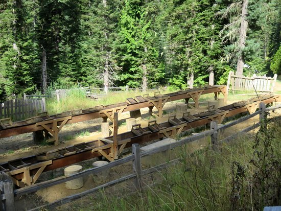 Saint Maries, ID: Sluicing frame. The natural forest setting of the garnet area is gorgeous.