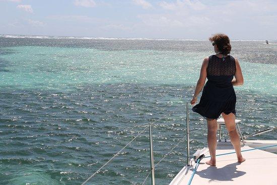 Les Ballades du Delphis: souvenir de la Martinique